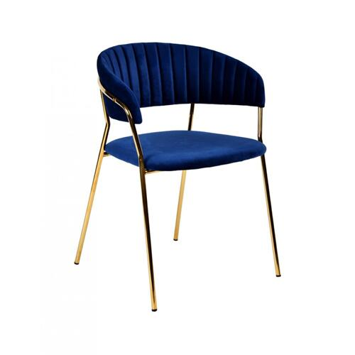 Modrest Brandy Modern Blue Fabric Dining Chair (Set of 2)
