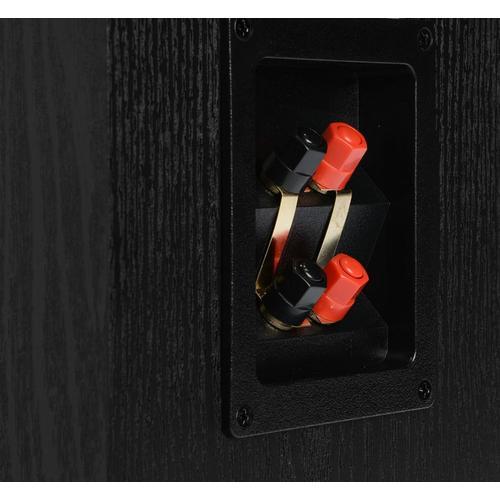 TSi Series Floor Standing Speaker in Black