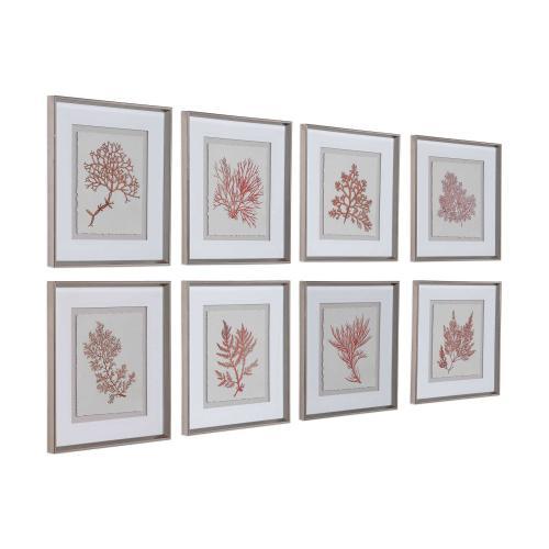Sunrise Coral Framed Prints, S/8
