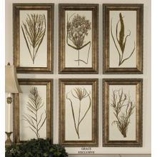 Wheat Grass I, II, III, IV, V, VI -