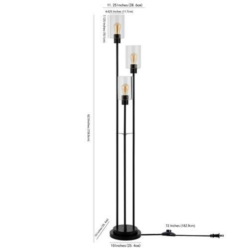 Remis Glass and Iron Floor Lamp - Black