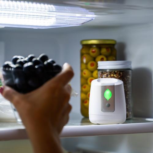 Greentech Environmental - pureAir FRIDGE Refrigerator Purification