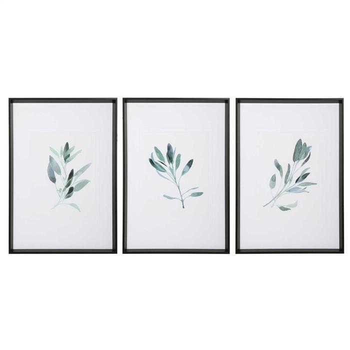 Uttermost - Simple Sage Framed Prints, S/3