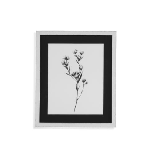 Gallery - Wild Thistle I