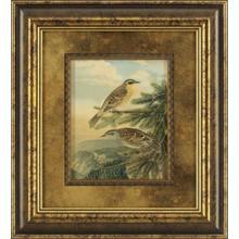 Small Woodland Birds I