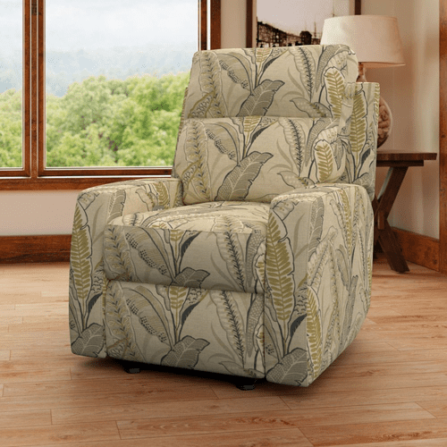 Davion Reclining Chair CP241HM/RC