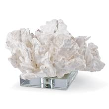 White Flower Coral On Crystal Base