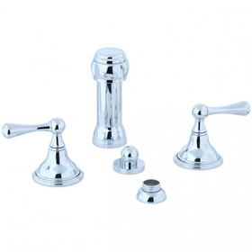Asbury - Vertical Spray Bidet Fitting - Polished Nickel