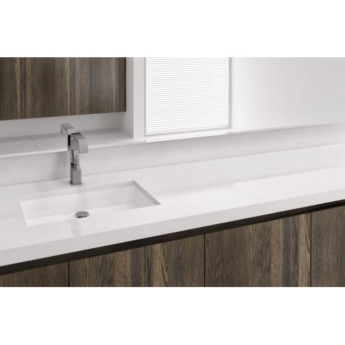 Undermount Sink VC 821U