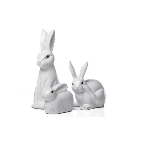 Sweet Timid Rabbit