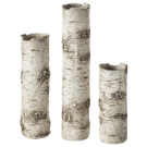 Birch Finish Branch Vase (3 pc. set) Product Image