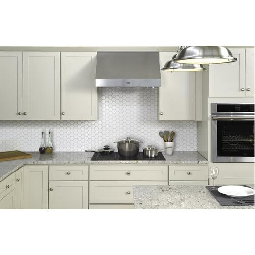 "CLOSEOUT-30"" Under Cabinet - Professional Range Hood"