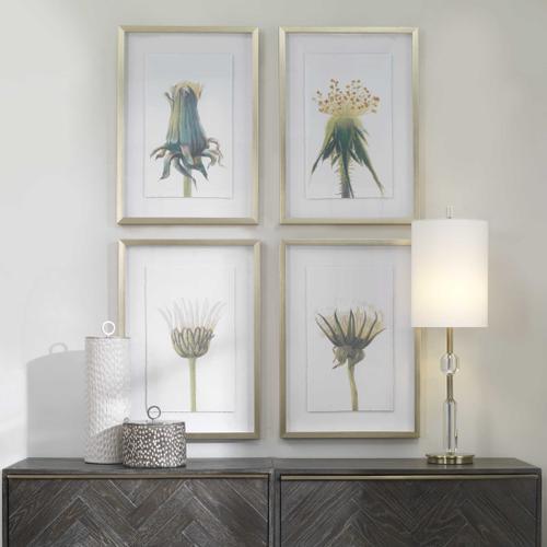 Wildflowers Framed Prints, S/4