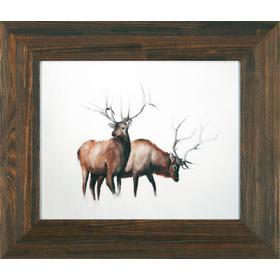 3p-two Elk