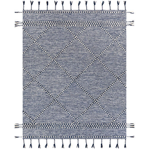 Surya - Zanafi Tassels ZTS-2305 2' x 3'