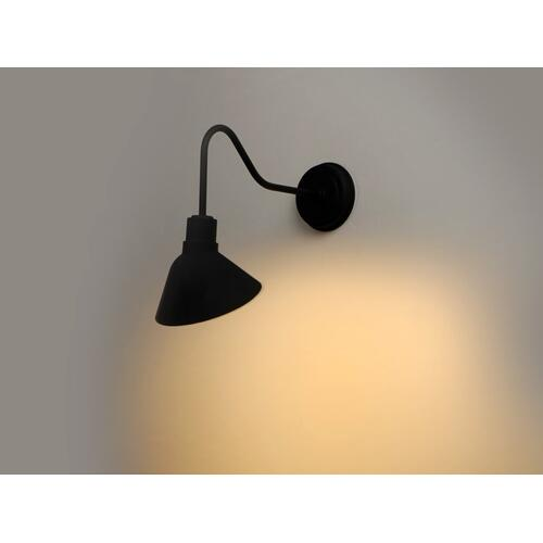 Signlite 1-Light Outdoor Wall Sconce