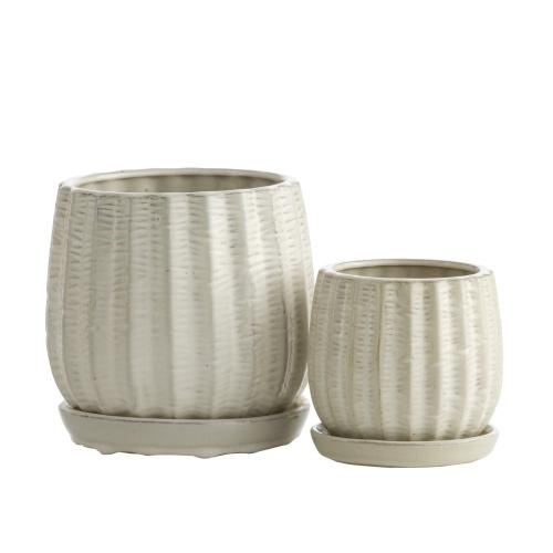White Gherkin Petits Pots w/ attached saucer, Set of 2