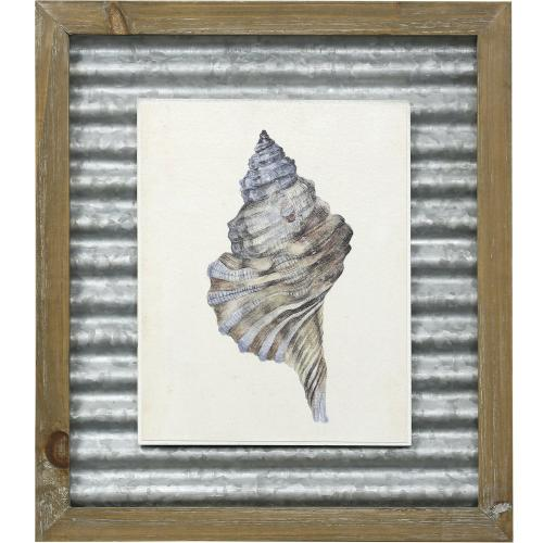 Style Craft - WATERCOLOR SEASHELL III  16in X 14in  Made in the USA  Textured Framed Print