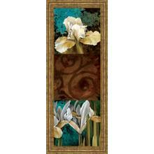 """From My Garden I"" By Linda Thompson Framed Print Wall Art"