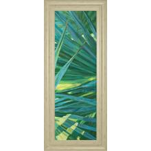 """Fan Palm II"" By Suzanne Wilkins Framed Print Wall Art"