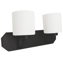 Paris 2-Light Vanity- Matte Black Finish- White Cylinder Glass