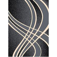 See Details - CONT-42 GRAY Contemporary Abstract Curvy Lines Rug