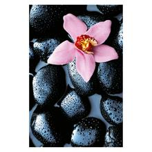 See Details - Stone Orchid - Giant Art