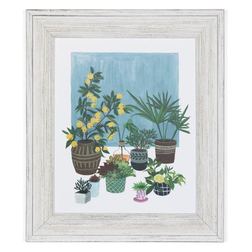 A PORTRAIT OF PLANTS 2