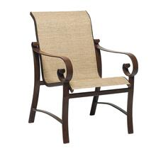 See Details - Belden Sling Dining Armchair