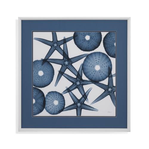 Bassett Mirror Company - Starfish Sea Urchins
