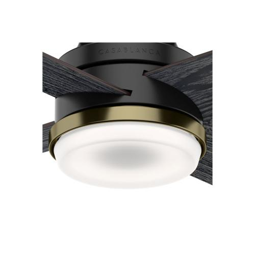 Daphne with LED Light 54 inch - Matte Black - Sea Salt Black