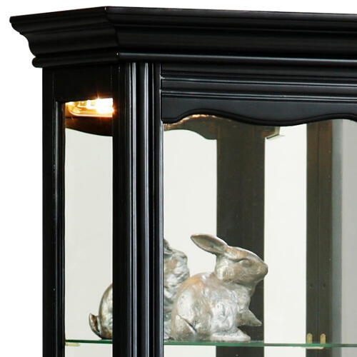 Pulaski Furniture - Tall 4 Shelf Mirror Backed Curio Cabinet in Onyx Black
