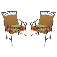 Valencia Resin Wicker/ Steel Dining Chairs (Set of 2) - Honey