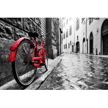 Framed - Red Bicycle