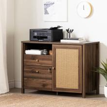 2-Drawer Credenza with Open and Closed Storage - Natural Walnut and Printed Rattan