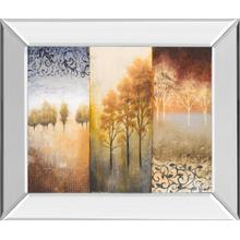 4949mf In By Classy Art In Annapolis Md Lost In Trees Il By Michael Marcon Mirror Framed Print Wall Art