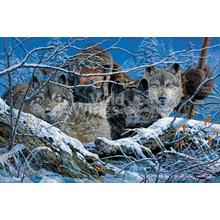"""View Product - The Predators - Limited Edition Print 17""""H x 25""""W"""