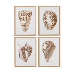 4 PC Gold Foil Shell