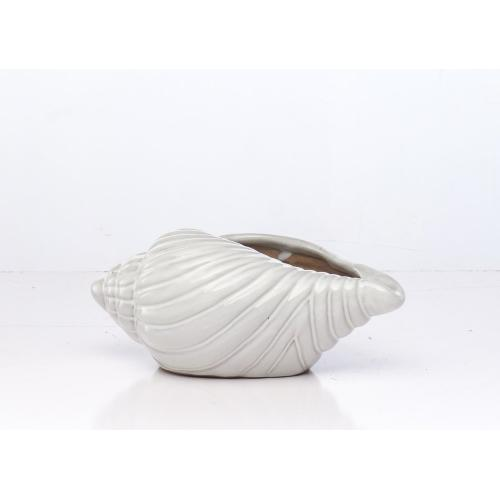 White Bonnet Shell Planter (Min 2 pcs)
