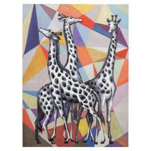 Contemporary View of Giraffes