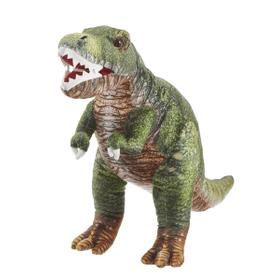 Tryannosaurus Dinosaur