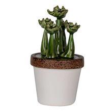 View Product - Ceramics Plant Decorate