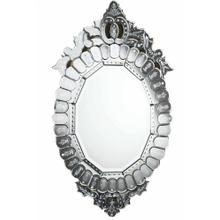 Venetian 22.25 in. Transitional Mirror in Clear