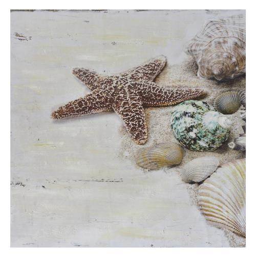 Crestview Collections - Washed Ashore