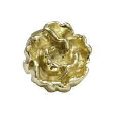 See Details - Solid brass rosette-shaped knob.