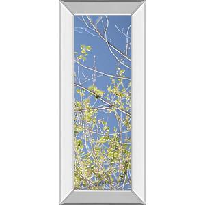 """Spring Poplars IV"" By Sharon Chandler Mirror Framed Print Wall Art"