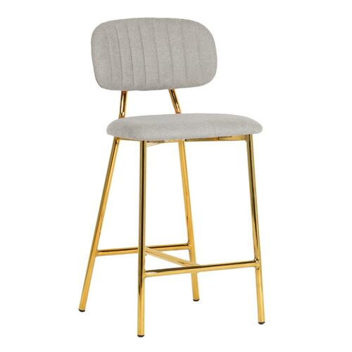 Tov Furniture - Ariana Grey Counter Stool (Set of 2)