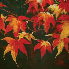 See Details - Feeling Of Autumn Printed Canvas Painting