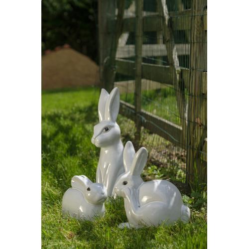Sweet Tall Rabbit