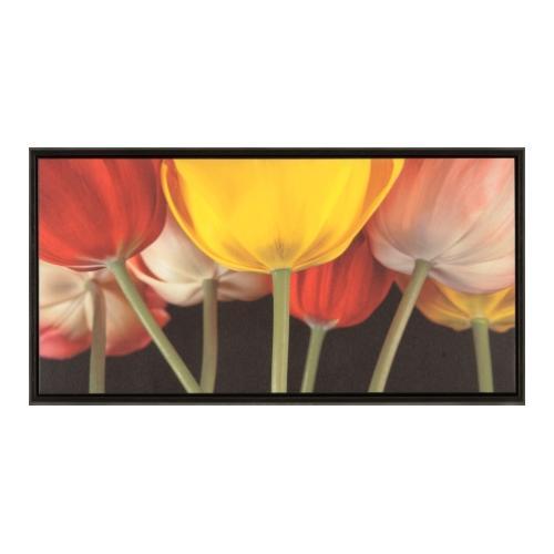 The Ashton Company - Sunshine Tulips